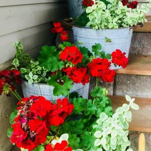 """Olding"" New Galvanized Pails – A Patience Project"