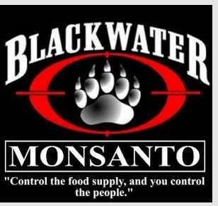 Why does a chemical company need a mercenary company?