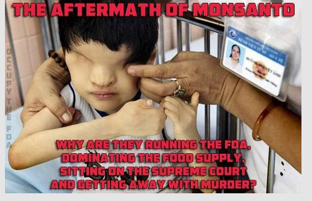 Aftermath of Monsanto