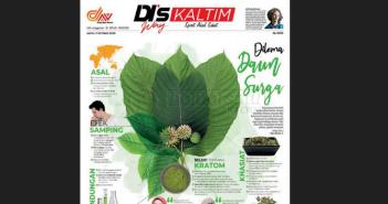 Kratom, Dilema Daun Surga