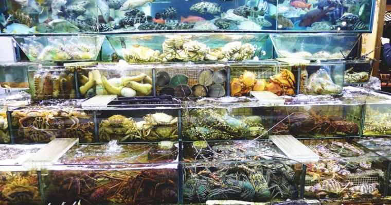 Chuen Kee Seafood Restaurant Hong Kong | Sai Kung 西貢全記海鮮