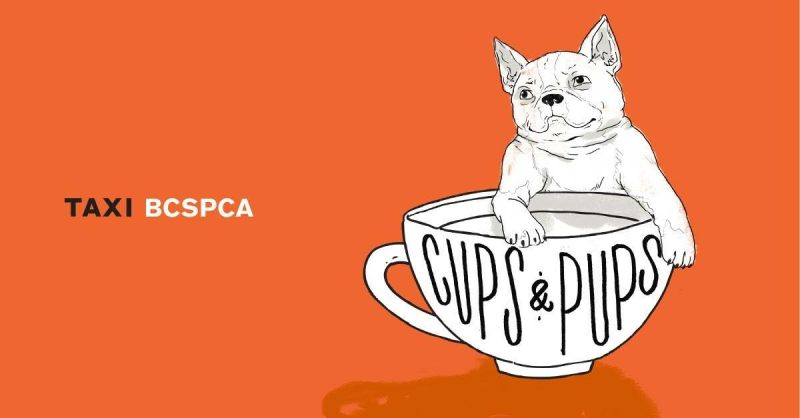 taxi cafe pop up dog cafe bc spca puppy adoption Instanomss Nomss Delicious Food Photography Healthy Recipes Travel Beauty Lifestyle Canada
