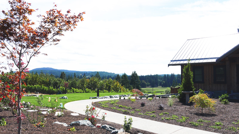 Blue Grouse Blue Grouse Estate Winery Duncan Victoria BC Instanomss Nomss Delicious Food Photography Healthy Travel Lifestyle Canada