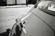47-trunk
