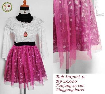 rok import 12