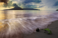 Born In Krakatau by Nico Fredia