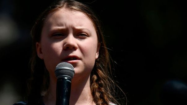 Swedish climate activist Greta Thunberg, 16, is due to meet British politicians next week