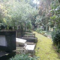 A Trieste il cimitero ebraico di via della Pace è un labirinto di nomi e pietre senza ritorno