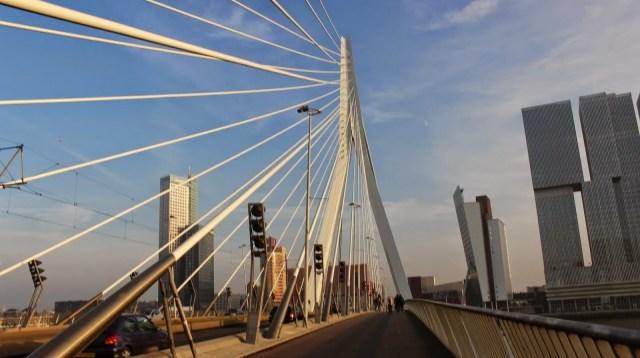 Rotterdam city guide erasmusbrug
