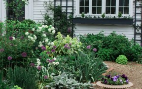 Backyard Improvements That Can Boost Your Home's Value