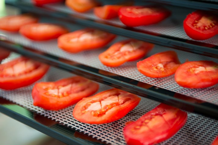 using a dehydrator to dry tomatoes