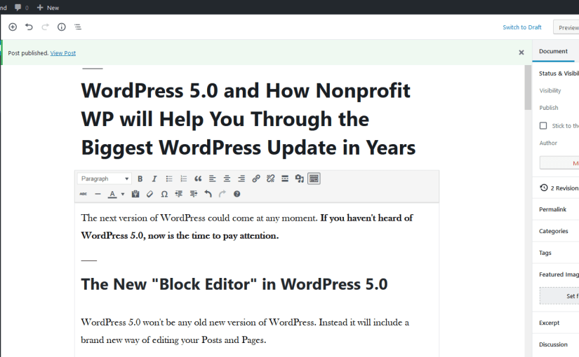 A draft of this blog post in the WordPress 5.0 editor