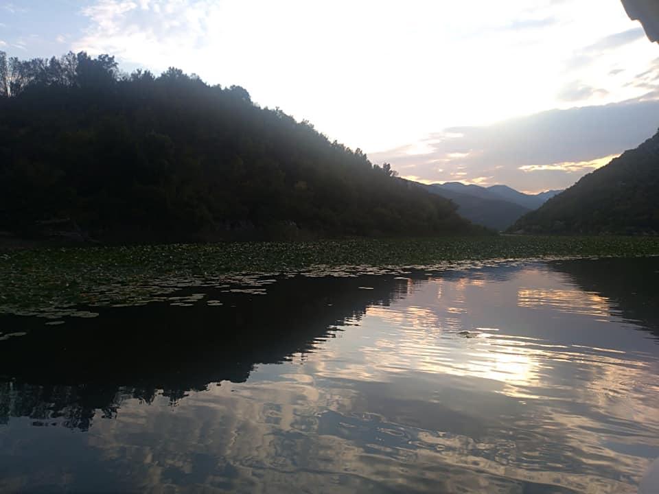 Montenegro dove andare? Lake Skadar, al confine tra Montenegro e Albania