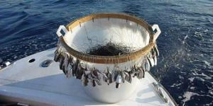 Pesca con il Palamito, una delle tecniche più antiche del mondo