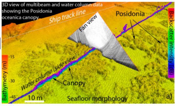 Acque marine: partnership di ricerca con Arpacal e ISPRA