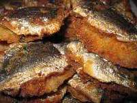 sardine a beccafico