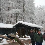Il parco di Spormaggiore è dedicato alle specie carnivore delle dolomiti, tra cui orsi, lupi, gufi reali e gatti selvatici. Una piccola fattoria sotto la neve, però, è pur sempre una visione suggestiva...