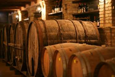 L'azienda vinicola Sergio del Casale