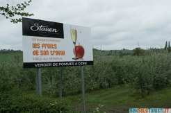 Campi di mele Stassen