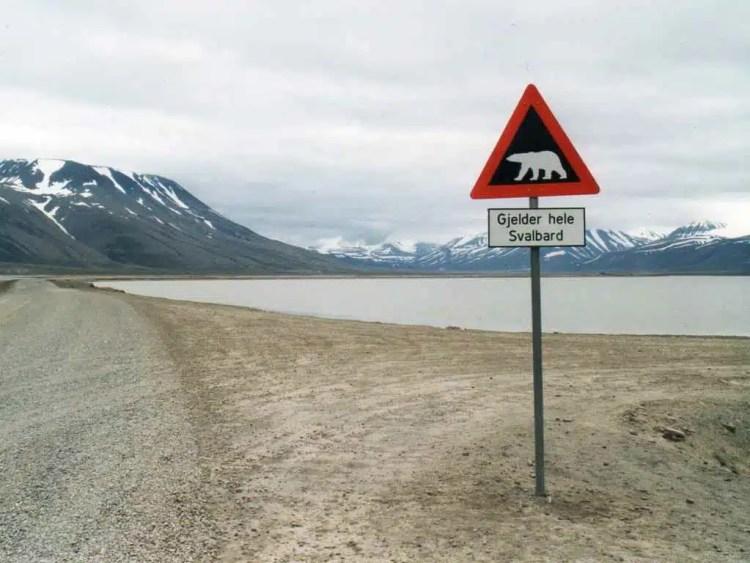 Svalbard - Norvegia