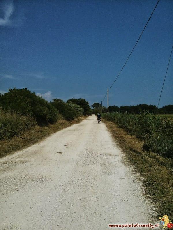 Bibione (VE) - Pista ciclabile verso il faro