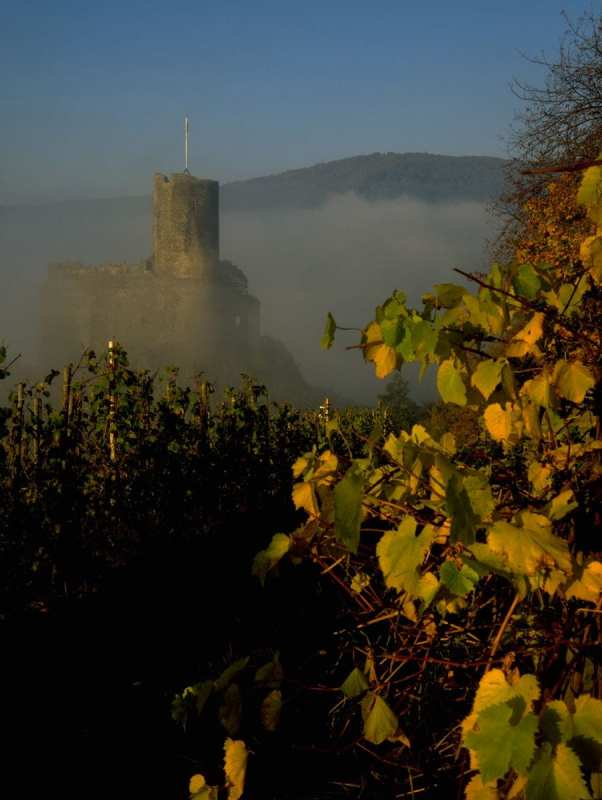 Rovine del castello di Landshut, Germania