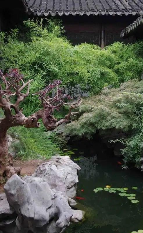 Giardino cinese - Suzhou, Cina