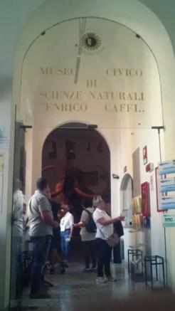 Museo Civico di Scienze Naturali Caffi - Bergamo, Italy