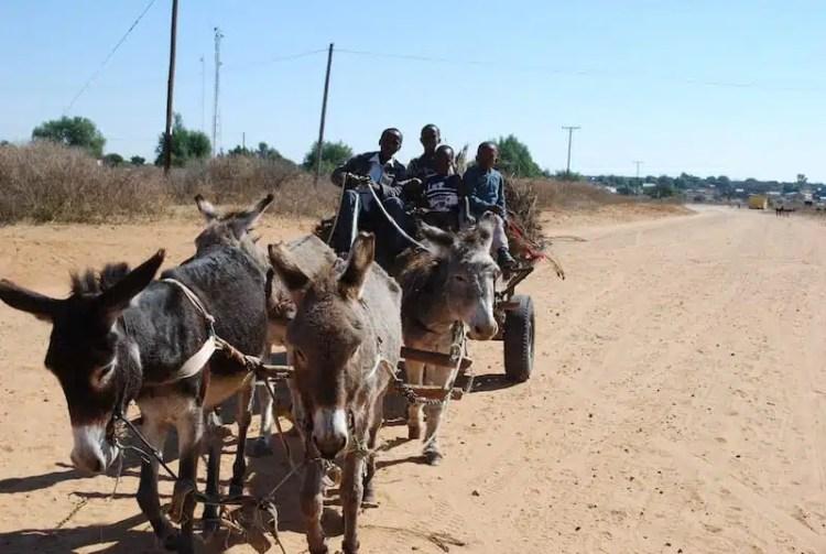 Carretto - Botswana