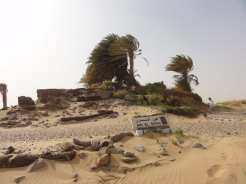 Sahara, Egitto