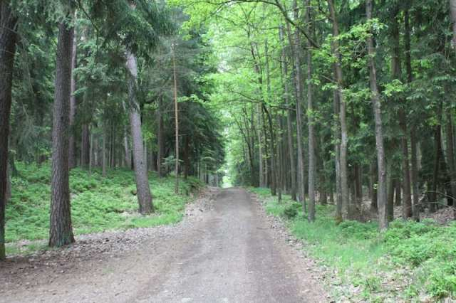Naturpark Altmühltal - Franconia, Germania