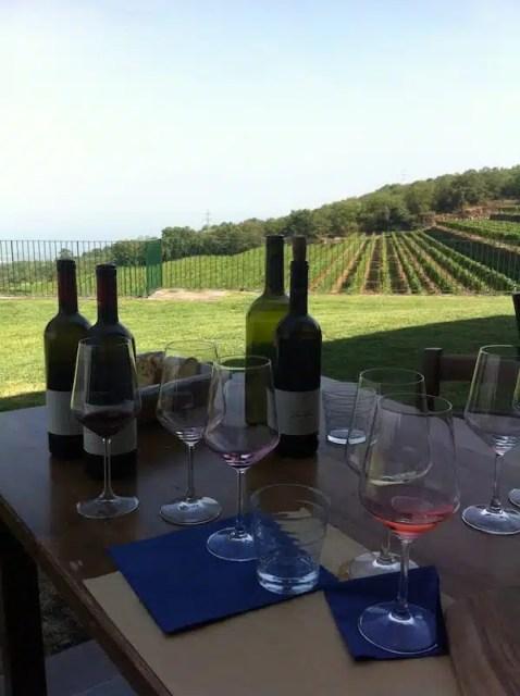 Tenuta vinicola Vini Gambino - Sicila, Italia