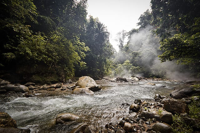 Gunung Leuser National Park - Indonesia