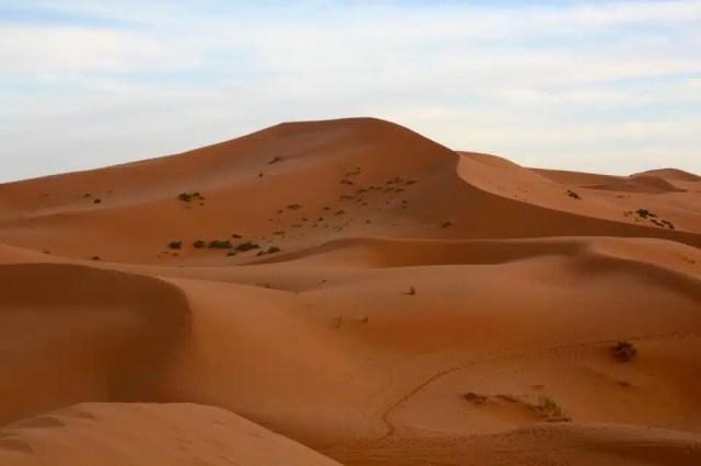 Deserto del Sahara - Marocco