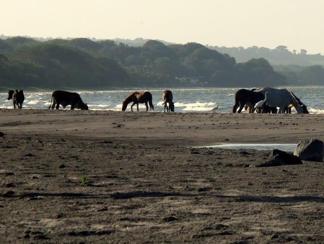 Playa Santo Domingo - Ometepe, Nicaragua