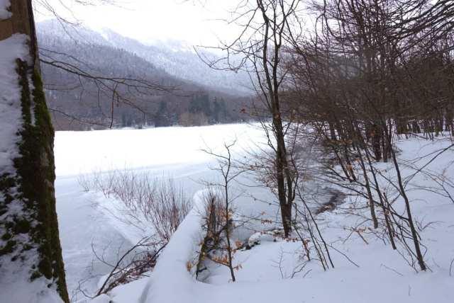 Lago di Biogradska - Montenegro
