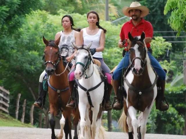 Cavallo - Costa Rica