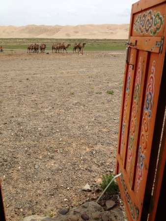 Khongoryn Els - Gobi, Mongolia