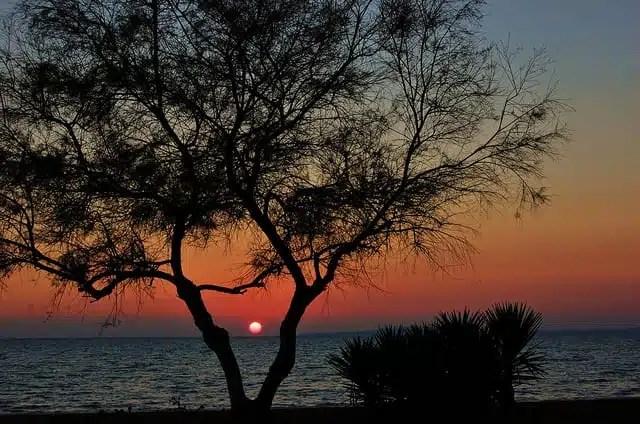 SArenal - Palma di Maiorca