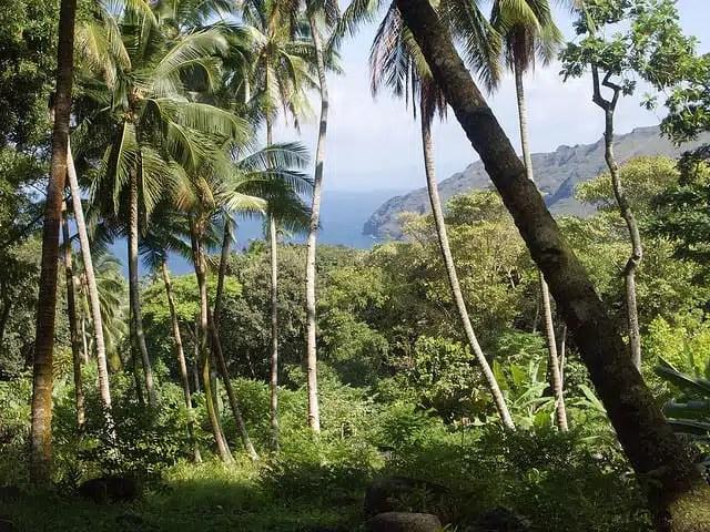 Hiva Oa, Isole Marchesi, Polinesia Francese