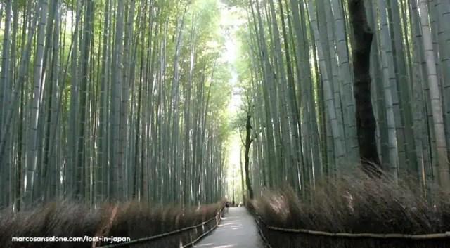 Arashiyama, Giappone