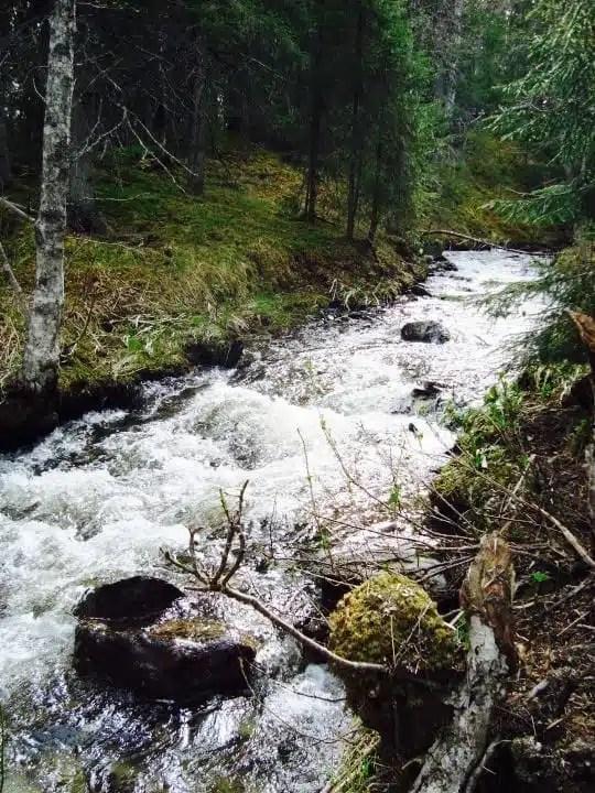 Sámi - Sweden's nomad people