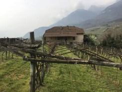 Sapore di Alto Adige