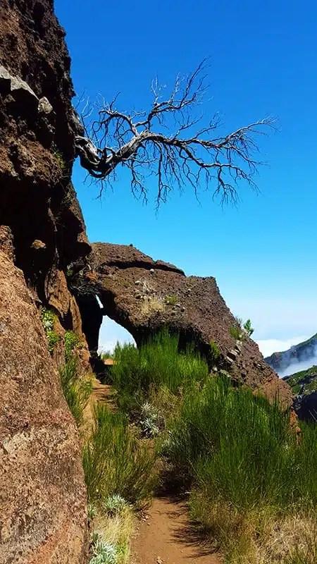 2) In cammino verso Pico Ruivo