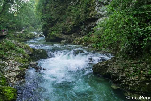 Gola di Vintgar - Slovenia
