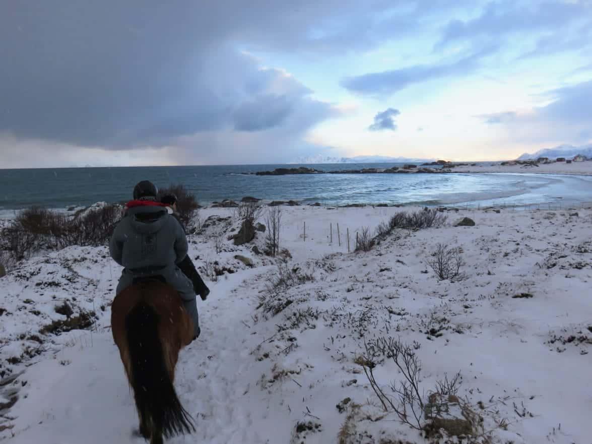 Norvegia artica, Lofoten, equitazione, Norvegia