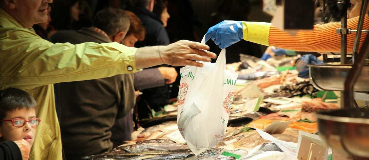 Cucina mediterranea: consigli su quale pesce comprare a gennaio -