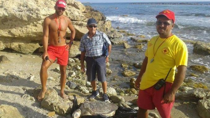 Διάσωση μεγάλης χελώνας καρέτα – καρέτα στα Δημοτικά Μπάνια