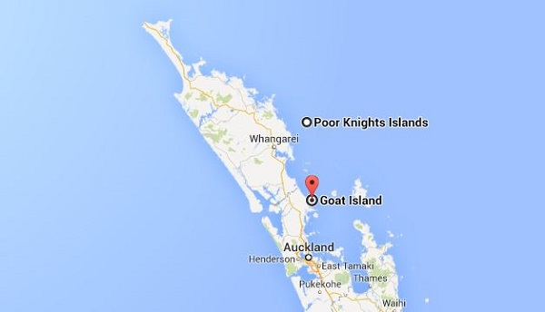 Quoi faire en Nouvelle-Zélande