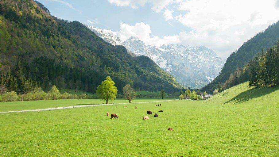 visiter slovenie